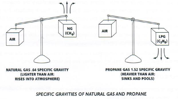 specific_gravity1
